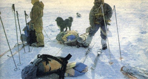 Фото №3 - Парапланы над Арктикой