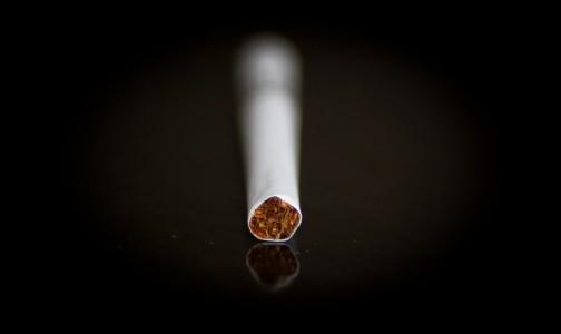 Фото №1 - Средняя цена пачки сигарет в России может вырасти до 216 рублей
