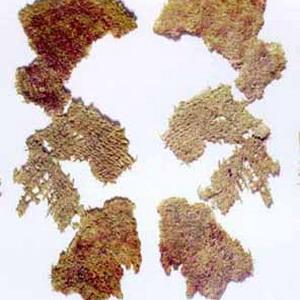 Фото №1 - В Греции найдена ткань возрастом в 3 тыс. лет