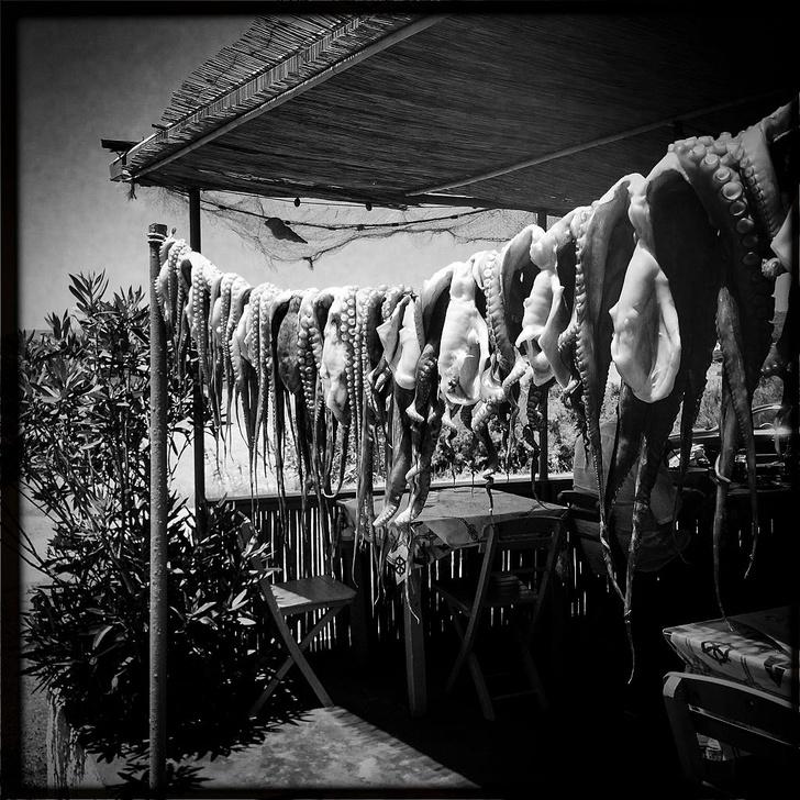 Фото №3 - Никкей: секретная перуанская кухня