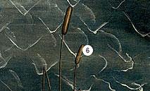 Фото №6 - 14 символов, зашифрованных в «Венере» Боттичелли