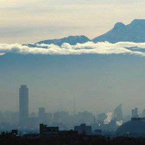 Фото №1 - Мехико задыхается