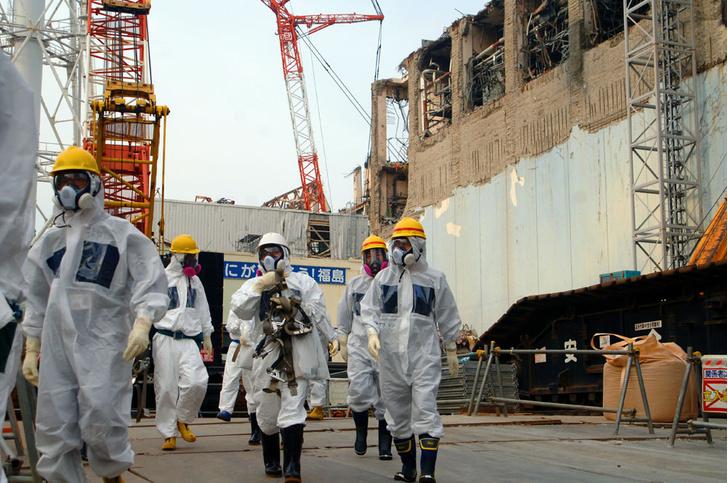Фото №1 - Зона аварии на «Фукусиме» признана безопасной