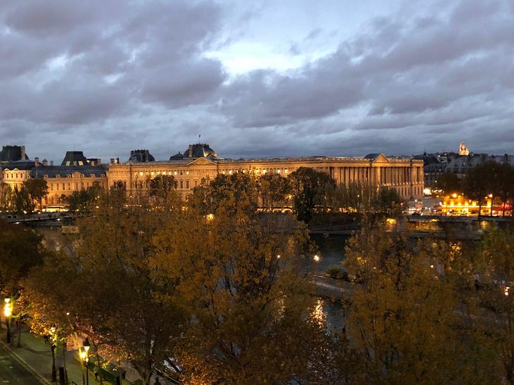 Фото №11 - Парижская квартира с видом на Лувр