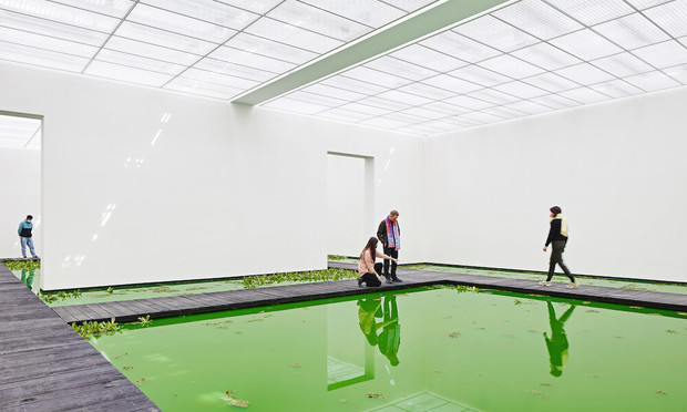 Фото №5 - Инсталляция Олафура Элиассона в Базеле