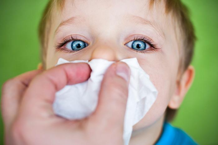 Фото №1 - Респираторный аллергоз