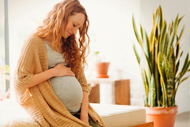 Фото №1 - Что означают сны, которые снятся беременным