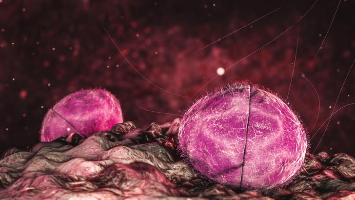 Фото №1 - В Англии изобрели капли от менингита