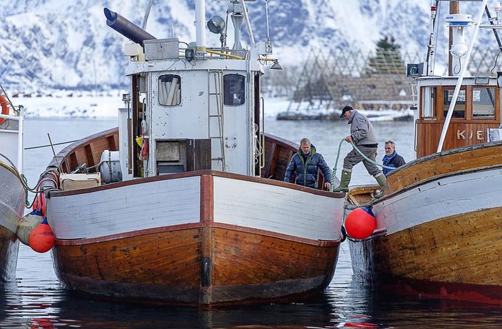 Фото №2 - Норвегия: рыбацкие сети