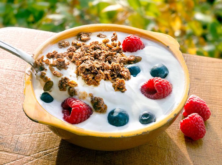 Фото №2 - Греческий йогурт: зачем и с чем его едят