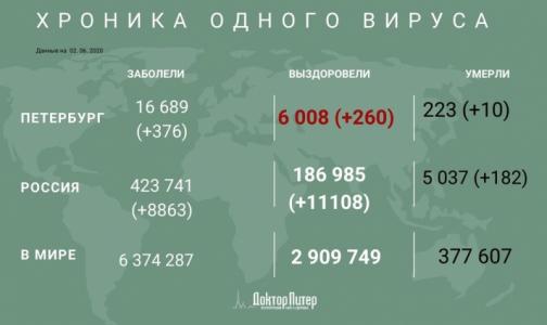 Фото №1 - За сутки коронавирус выявили у 376 петербуржцев