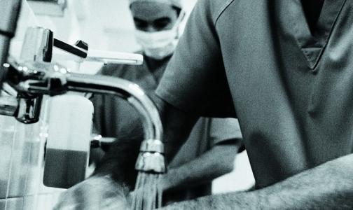Фото №1 - Двух детей из Ленобласти госпитализировали с клещевым энцефалитом