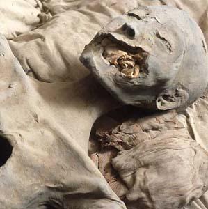 Фото №1 - Хранитель печати Эхнатона