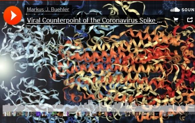 Фото №1 - Ученый выложил полуторачасовую запись того, как звучит коронавирус