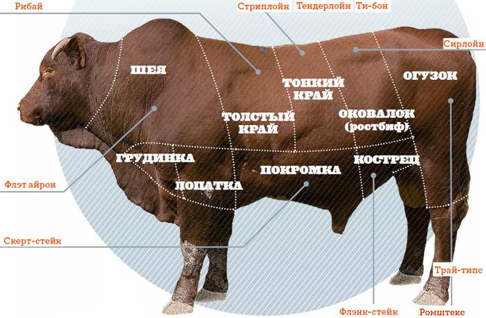 Фото №1 - Аппетитные формы: классификация стейков