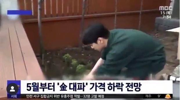 Фото №2 - Это шутка? Ки из SHINee стал героем новостного сюжета о зеленом луке