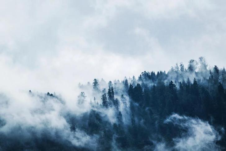 Фото №1 - Что такое edge computing и почему все внезапно заговорили о «туманных вычислениях»