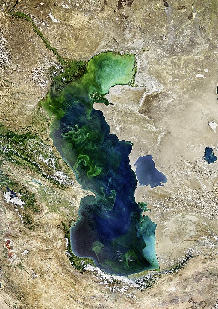 NORMAN KURING, OCEAN COLOR WEB / NASA