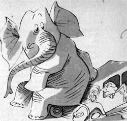 Фото №3 - За слонами и от слонов