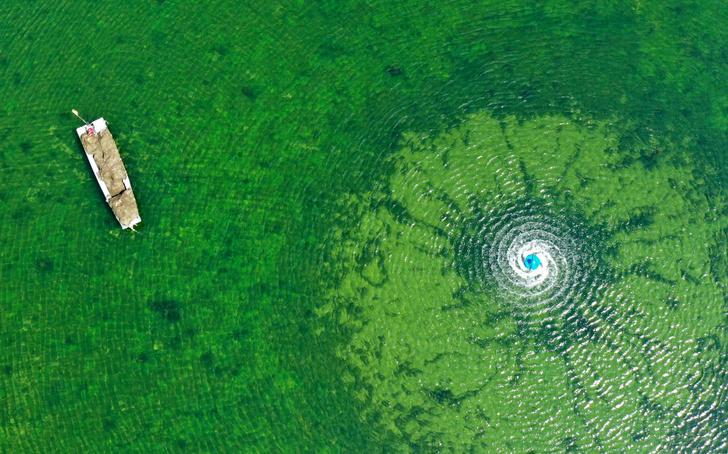 Фото №1 - Озеро Бабочек