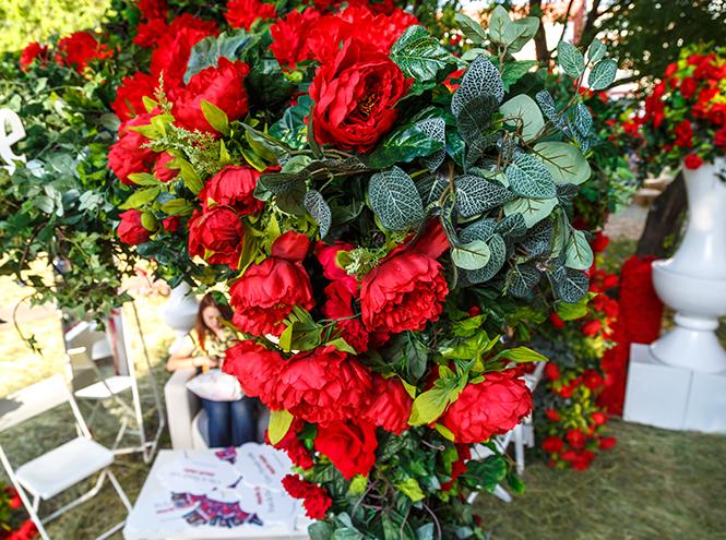 Фото №9 - Видео: как прошел фестиваль цветов Moscow Flower Show
