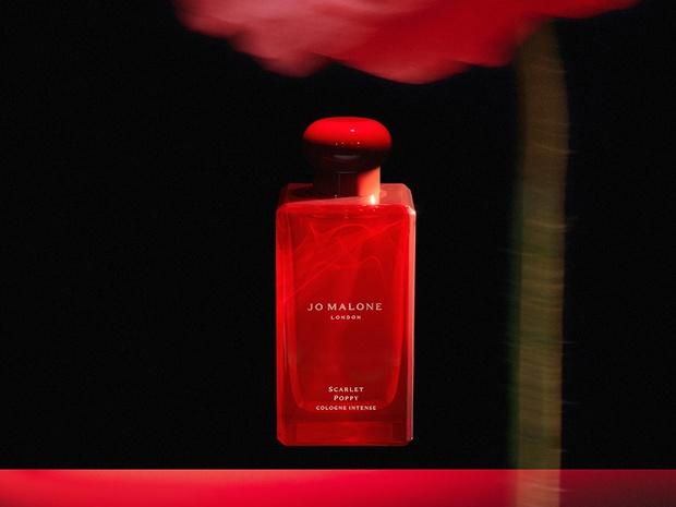Фото №2 - Аромат дня: Scarlet Poppy Cologne Intense от Jo Malone London