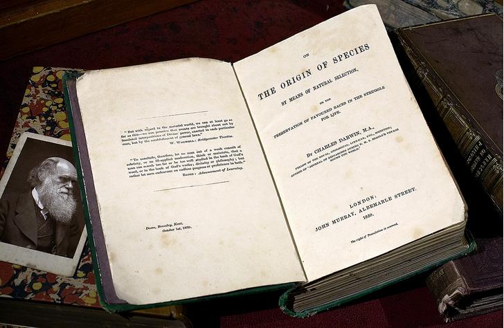 Фото №1 - 160 лет назад... Чарлз Дарвин совершил революцию в науке