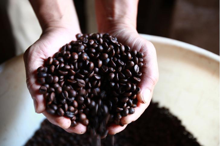 Фото №1 - Почему нам так нравится горький вкус кофе