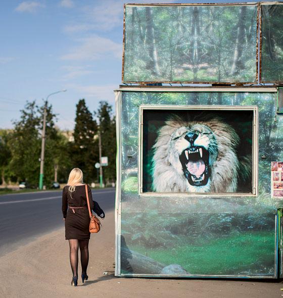 Фото №5 - Тишь да гладь Мценского уезда