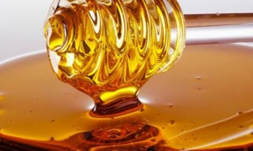 Фото №1 - Россельхознадзор забраковал отечественный мед с канцерогенами