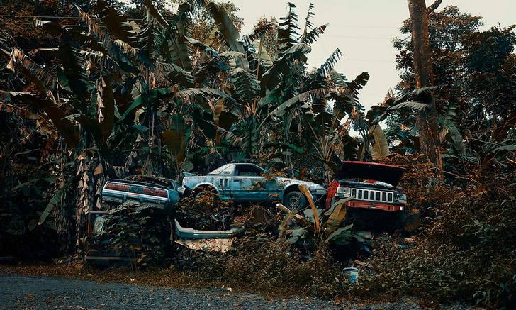 Фото №1 - Брошенные автомобили на Гавайях (галерея)