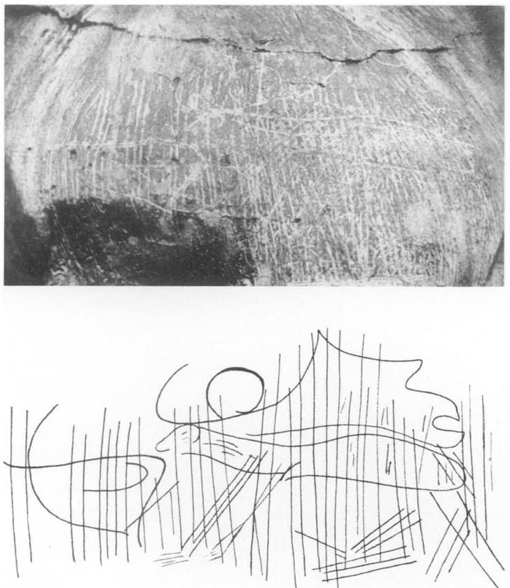 Фото №2 - Археолог случайно открыл, как наскальные рисунки превращаются в первобытные мультики