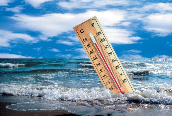Фото №1 - Глобальное потепление, или Высокий градус политики