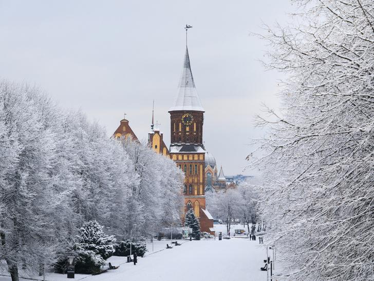 Фото №6 - Новогодние каникулы в России: 5 лучших направлений