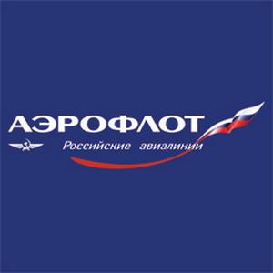 Фото №1 - В России появятся электронные билеты