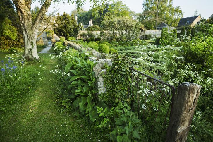 Фото №2 - 6 способов красиво и недорого оформить изгородь на даче