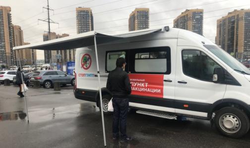Фото №1 - «Квадри» или обычная? Петербуржцев призывают привиться от гриппа быстрее, но вакцин мало