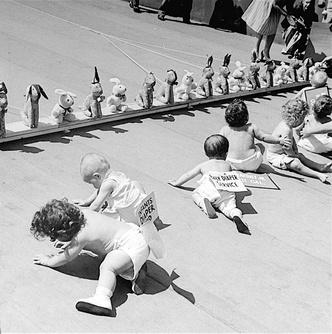 Фото №3 - Гонка младенцев с драматичным финишем (видео)