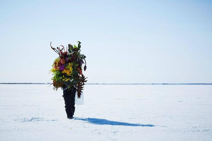 Фото №4 - Инсталляция из замороженных цветов на Хоккайдо