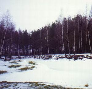 Фото №1 - К выходным потеплеет