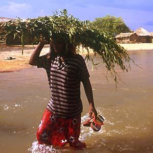 Фото №1 - Внезапные наводнения в Судане убили 20 человек