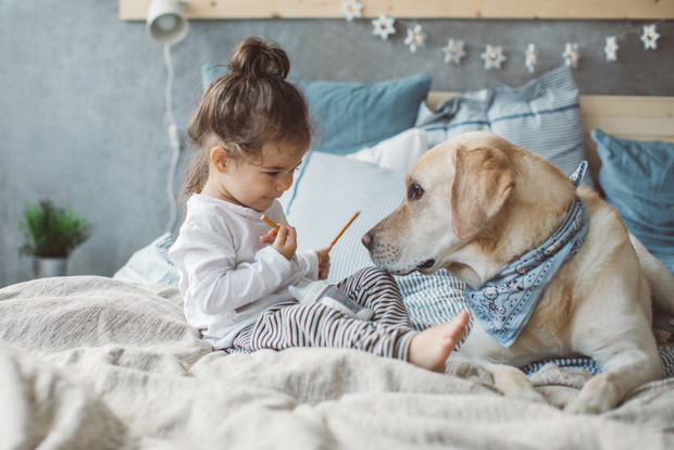 Фото №5 - 5 опасных заблуждений о дружбе ребенка и собаки