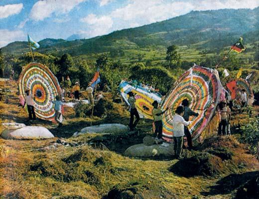 Фото №1 - Гигантские змеи майя