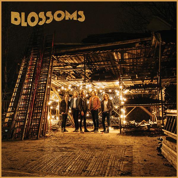 Фото №1 - Blossoms выступят в Москве