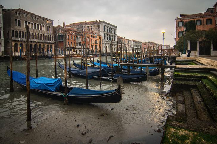 Фото №1 - «Высохшая» Венеция