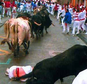 Фото №1 - Женщины тоже хотят бегать с коровами