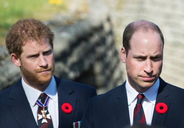 Фото №15 - Братская война: что на самом деле происходит в отношениях между принцами Гарри и Уильямом, комментируют эксперты
