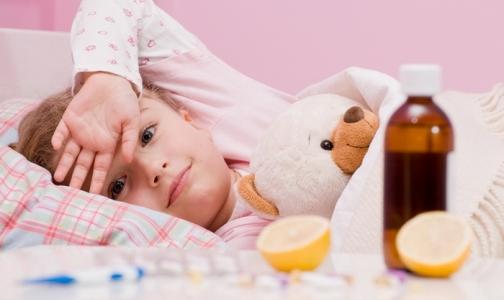 Фото №1 - Главное отличие сезона гриппа-2013 от пандемии-2009 в Петербурге: тяжело болеют дети и пожилые