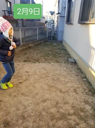 Фото №4 - Мальчик победил сорняки на заднем дворе, бегая по ним каждый день по полчаса