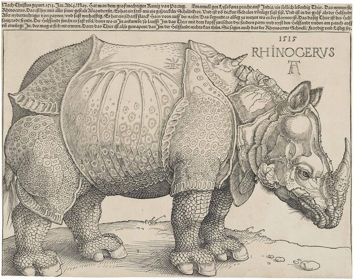 Фото №25 - Как в старину художники изображали животных, которых никогда не видели (25 странных существ)